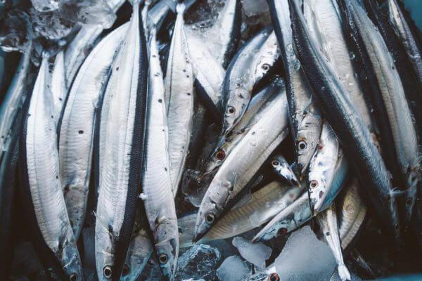 魚に含まれるDHAやEPAなどのオメガ3系脂肪酸のダイエットへの効果のアイキャッチ