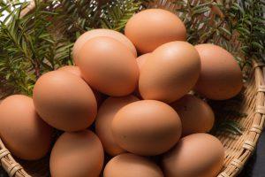 高タンパク質食材BEST10と調理例(レシピ)のアイキャッチ