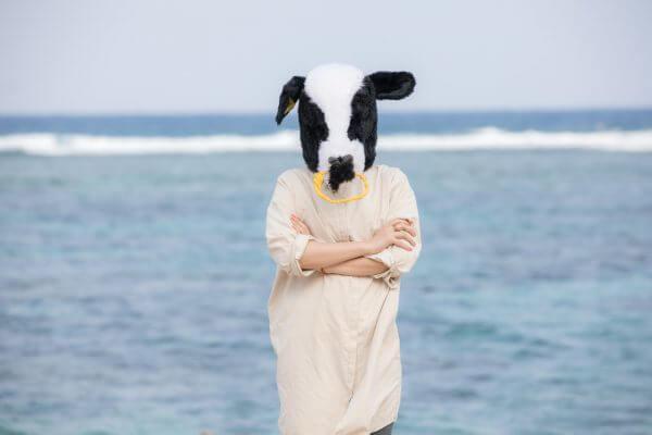 食べてすぐ寝ると牛になるって本当?牛になった人がいるのか調べてみたのアイキャッチ
