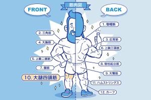 [筋トレ]大腿四頭筋の鍛え方やおすすめメニュー[完全版]のアイキャッチ