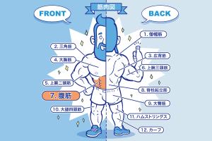 [筋トレ]腹筋の鍛え方やおすすめメニュー[完全版]のアイキャッチ